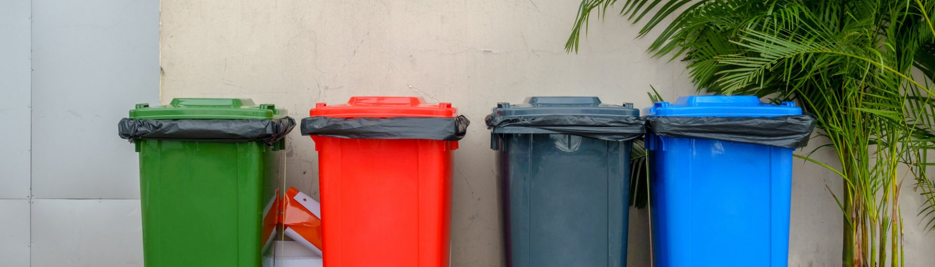 Mülltonnen: Top 3 Modelle, richtige Mülltrennung